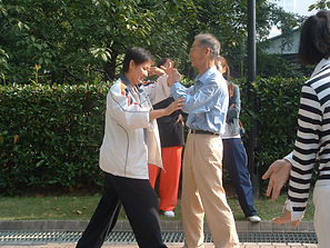 Sang Xiling and Wan Wende 'tui shou' pushing hands 2006