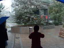 shanghai 17 feb (4).JPG