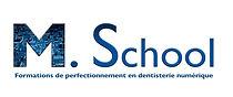 Logo M school 1.jpg