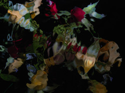 Floral Vanitas