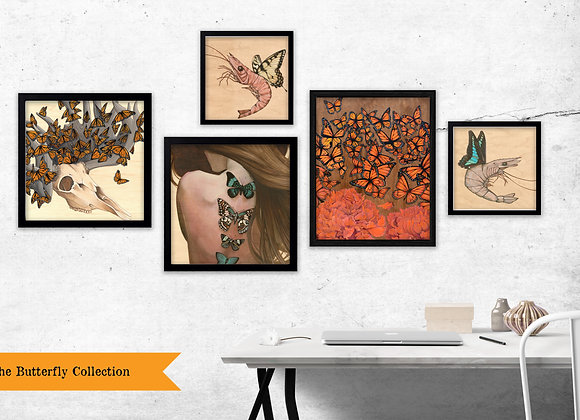 The Butterfly Collection - Set of 5 Prints