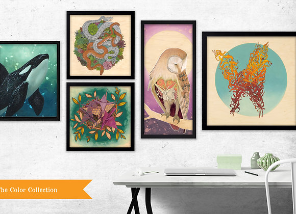 The Color Collection - Set of 5 Prints