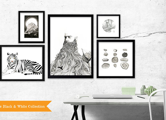 The Black & White Collection - Set of 5 Prints