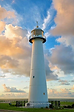 Lighthouse alex.png