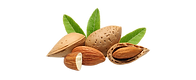 almond-big-removebg-preview.png