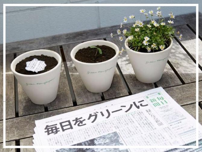 """Planter et faire pousser son """"quotidien"""""""