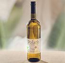 Polaris Bio weg.jpg