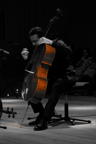 Stultifera Navis - Cello Solo at Barattelli