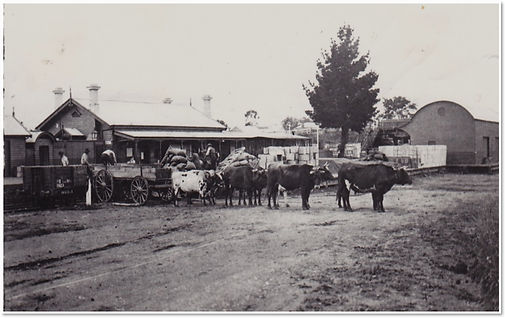 Loading at Drouin Station 1912.jpg