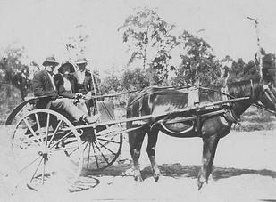 18. Fred, Alice & driver. horse & jinker