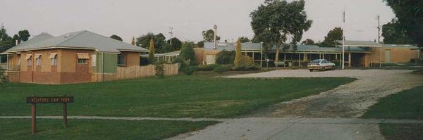 Lyrebird 1991.jpeg