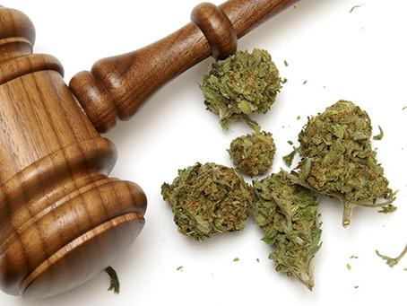 Marijuana Business Formation - Sgro & Roger Can Help