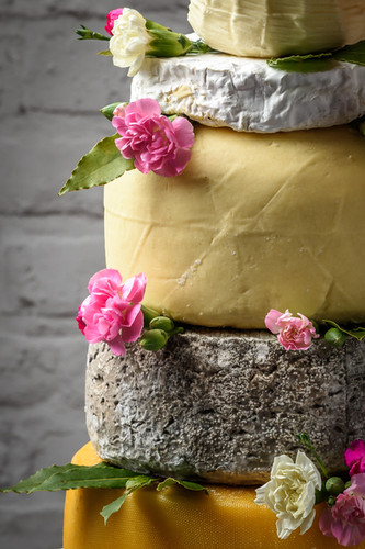 Mrs Temple's Cheese - print (38 of 70).j