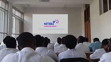 NITIBU 2015.PNG