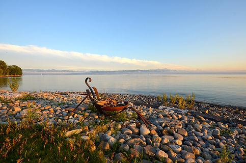 Entspannter Urlaub in er Seeterrasse, direkt am Ufer des Bodensee