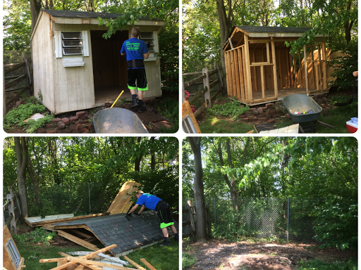 shed tear down & removal