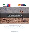 PUEBLO DIAGUITA.png
