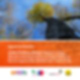 Manual_de_Estudios,_Cambio_Climático_y_B