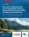 Plan_para_la_Implementacion_de_las_Salva