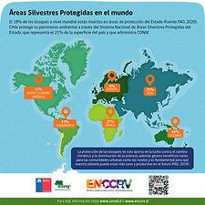 Infografía-E(1).jpg