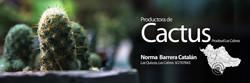 Gráfica - Productora de Cactus