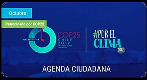 agenda ciudadana.png