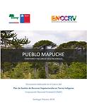 PUEBLO MAPUCHE.png