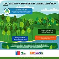 Infografía_8_-_Todo_suma-01.jpg