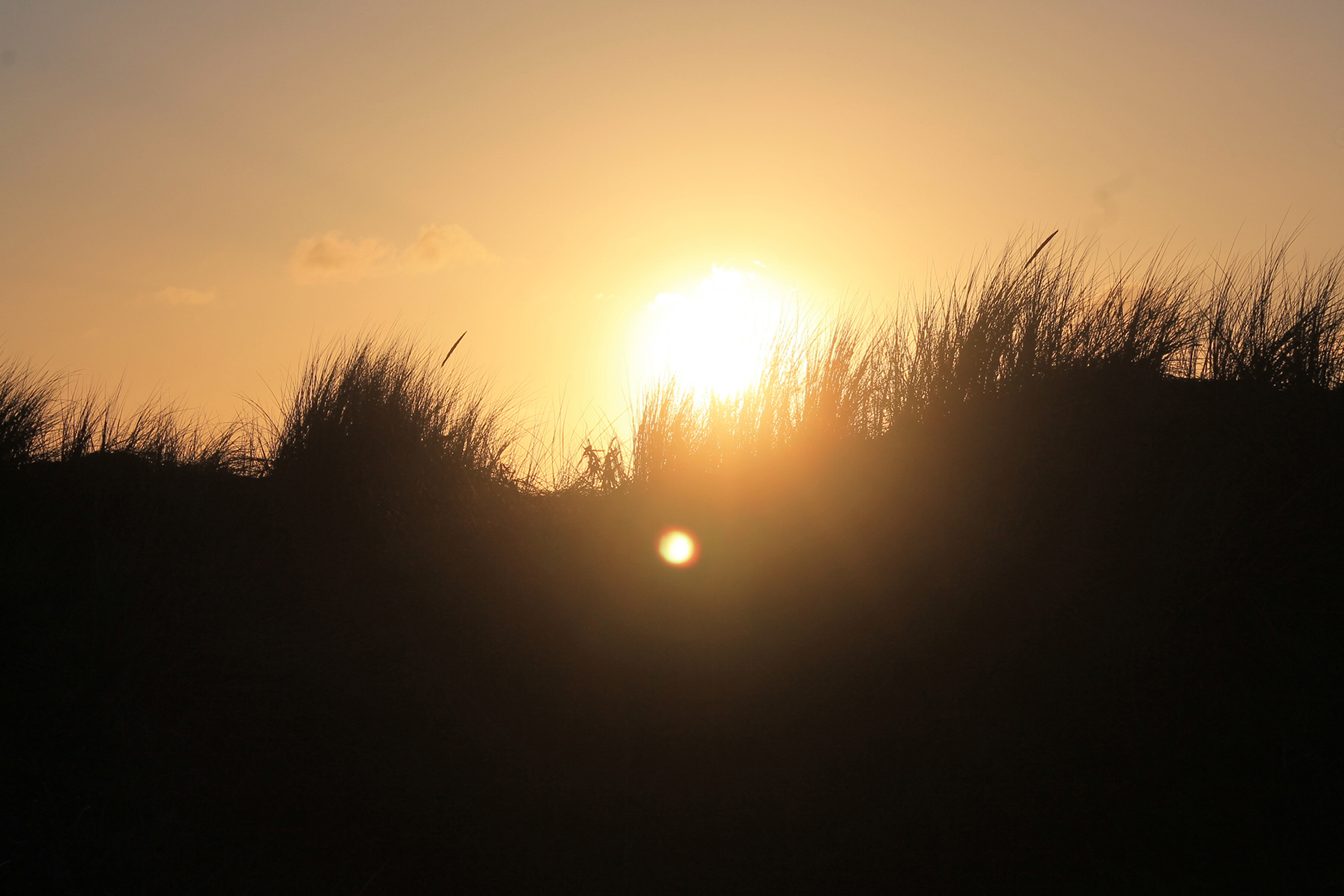 Imponente Sol