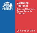 manual_normas_graficas fondo logo gob_edited.png