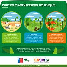 Infografía_6_-_Principales_amenzas_para_