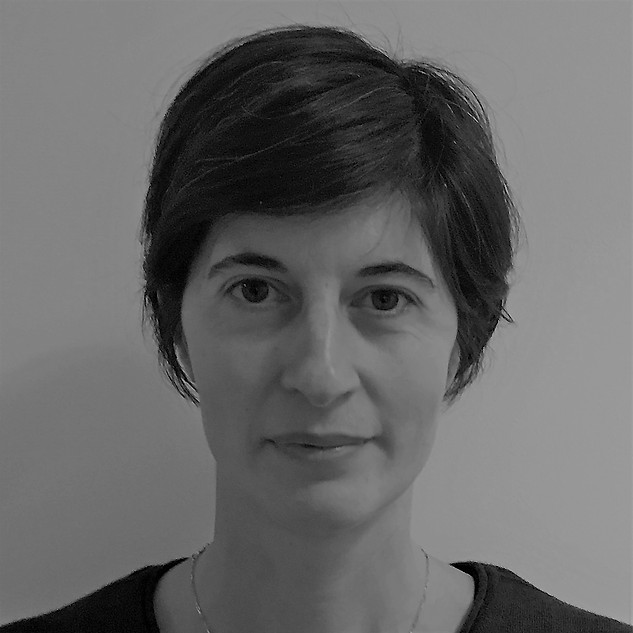 Dr Silvia Sottini - Experimental Physicist