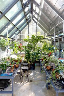 Greenhouse09