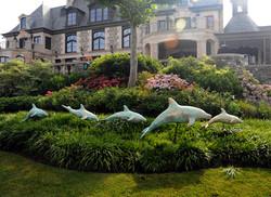 Dolphins in Garden
