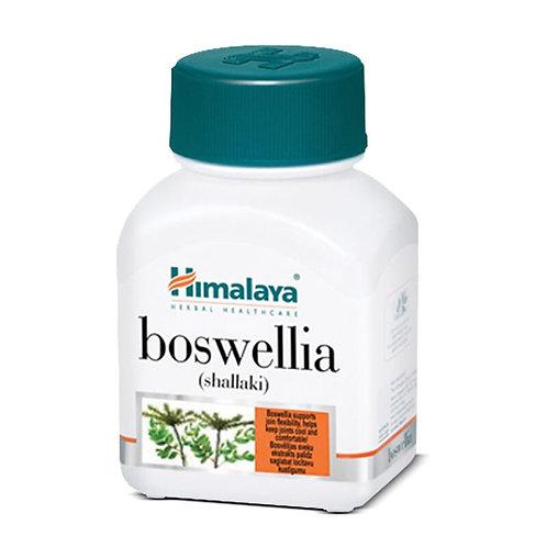 BOSWELLIA SERRATA - HIMALAYA