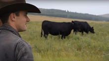 The 7 'What if?' Questions Every Rancher Should Ask