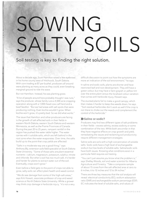 Sowing Salty Soils