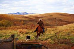 Cowboy take me away LG