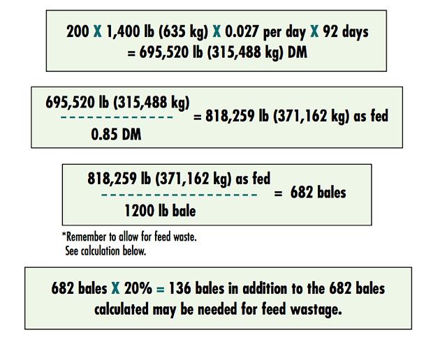 Where Should You Bale Feed