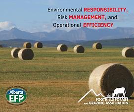 Environmental Responsibility.png
