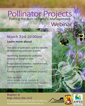 Pollinator 2021 Poster.jpg