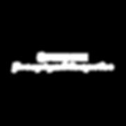 白色logo手写体.png