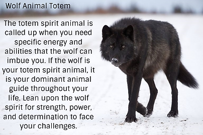 wolf totem pinterest.png