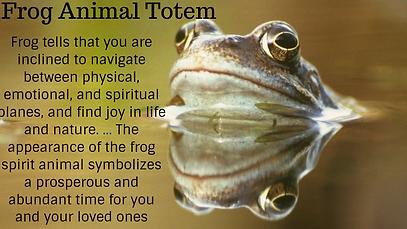 frog animal totem.png