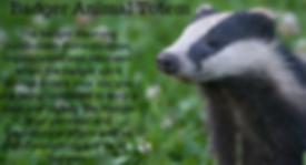 badger animal totem.png