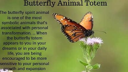 butterfly animal totem pinterest.png