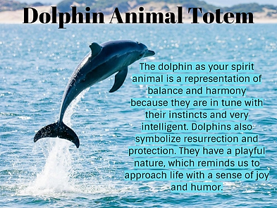 Dolphin animal totem.png