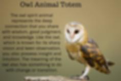 owl animal totem pinterest.png