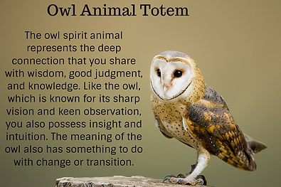 owl animal totem pinterest.png
