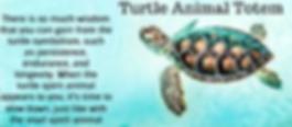 turtle animal totem pinterest.png